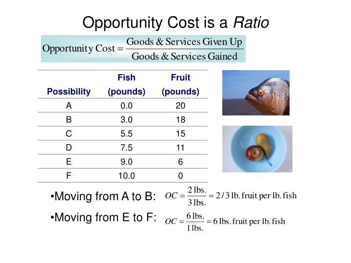 Opportunity Cost is a