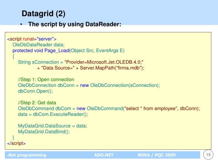 Datagrid (2)