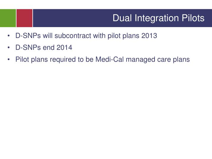 Dual Integration Pilots