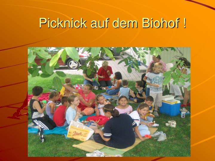 Picknick auf dem Biohof !