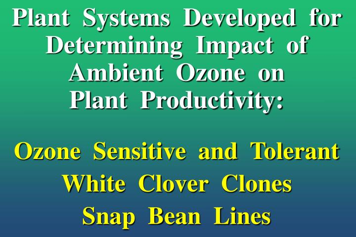 Plant  Systems  Developed  for  Determining  Impact  of Ambient  Ozone  on          Plant  Productivity: