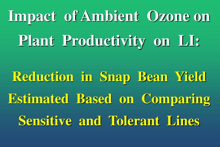 Impact  of Ambient  Ozone on Plant  Productivity  on  LI: