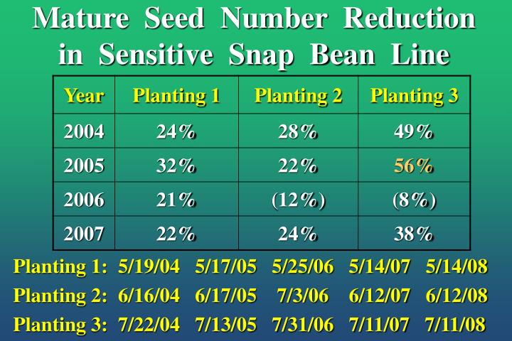 Mature  Seed  Number  Reduction  in  Sensitive  Snap  Bean  Line