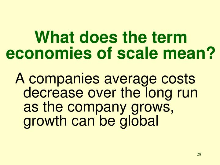 What does the term economies of scale mean?