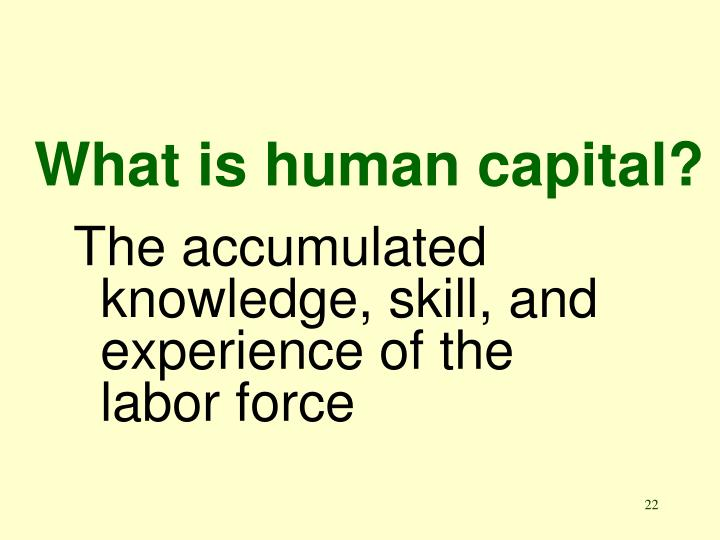 What is human capital?