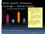 adult health insurance coverage monroe county