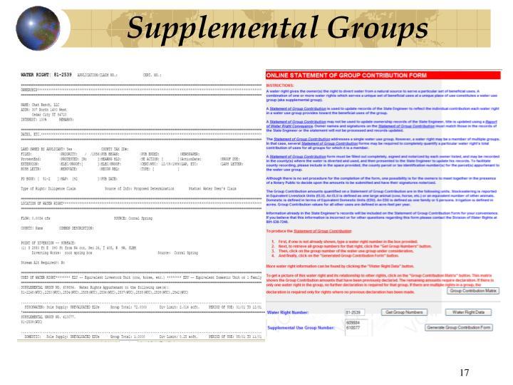 Supplemental Groups