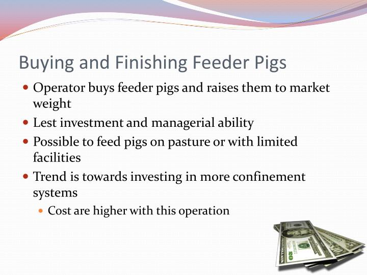 Buying and Finishing Feeder Pigs
