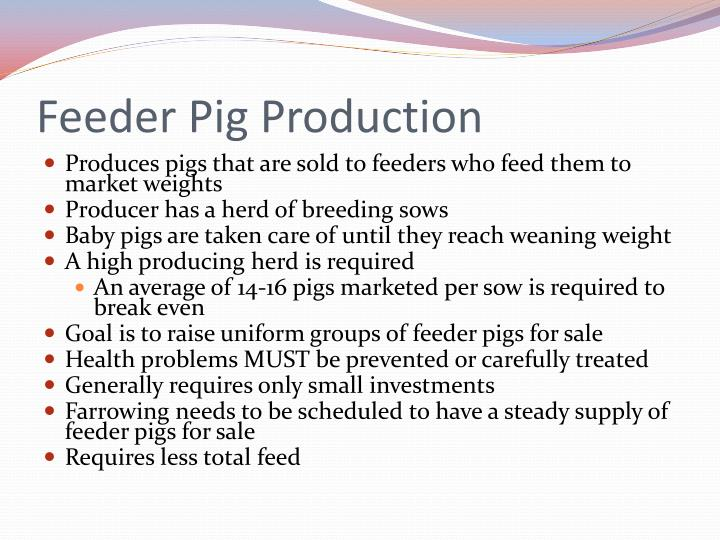 Feeder Pig Production