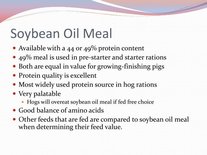 Soybean Oil Meal