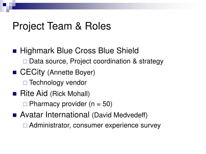 Project Team & Roles