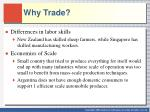 why trade1