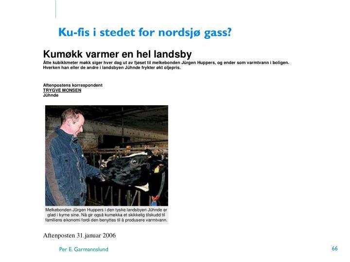 Ku-fis i stedet for nordsjø gass?