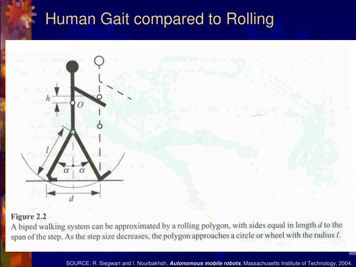 Human Gait compared to Rolling