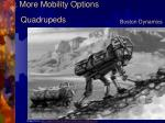 more mobility options2