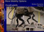 more mobility options3