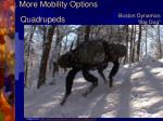 more mobility options6