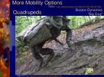 more mobility options7