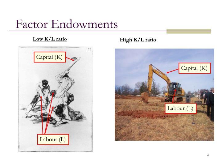 Factor Endowments