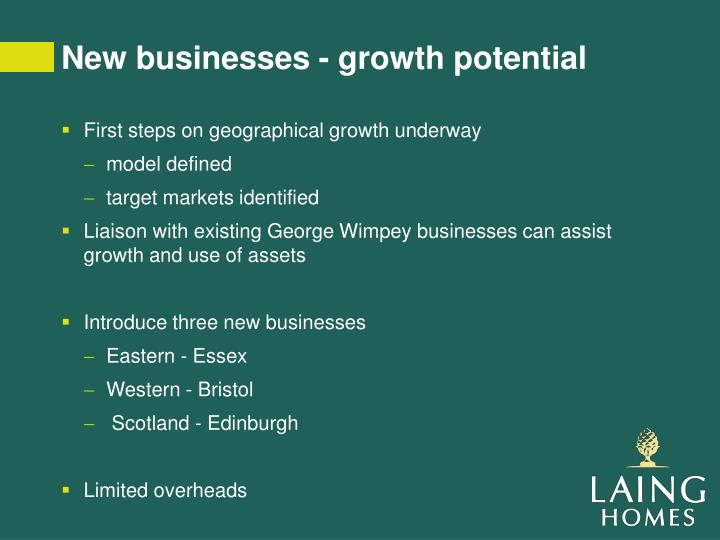 New businesses - growth potential