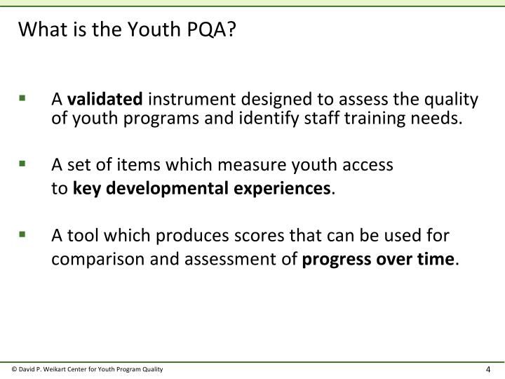 What is the Youth PQA?