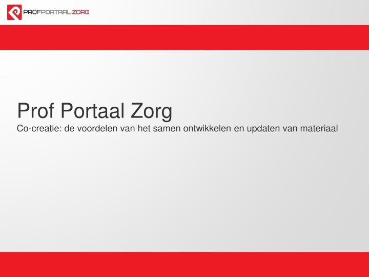 Prof Portaal Zorg