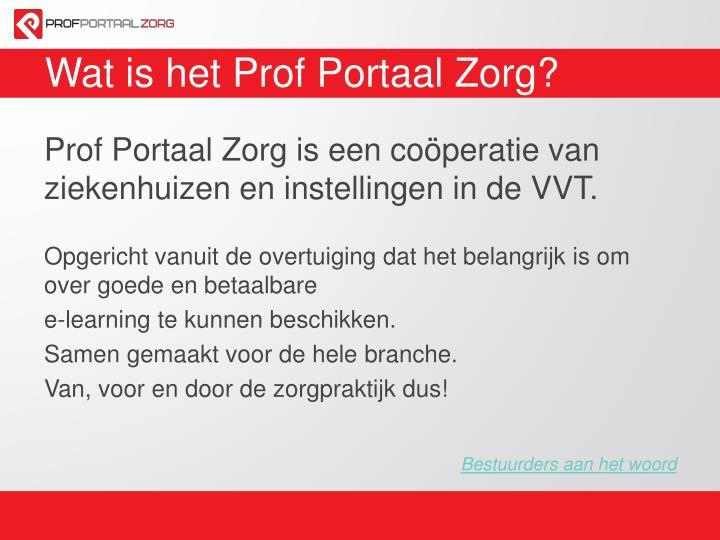 Wat is het Prof Portaal Zorg?