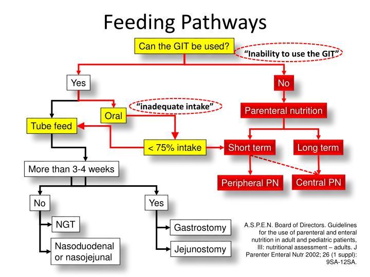 Feeding Pathways