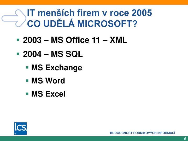 IT menších firem v roce 2005   CO UDĚLÁ MICROSOFT?