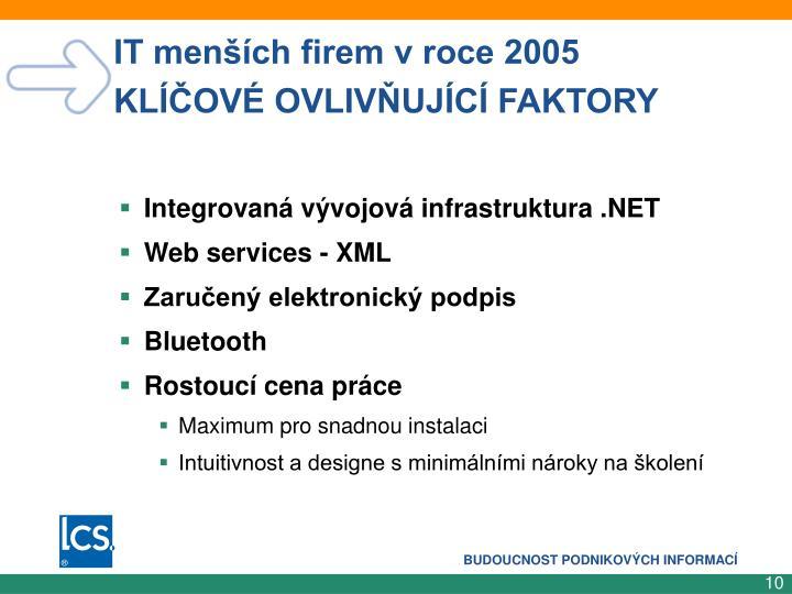 IT menších firem v roce 2005              KLÍČOVÉ OVLIVŇUJÍCÍ FAKTORY