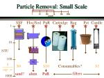 particle removal small scale