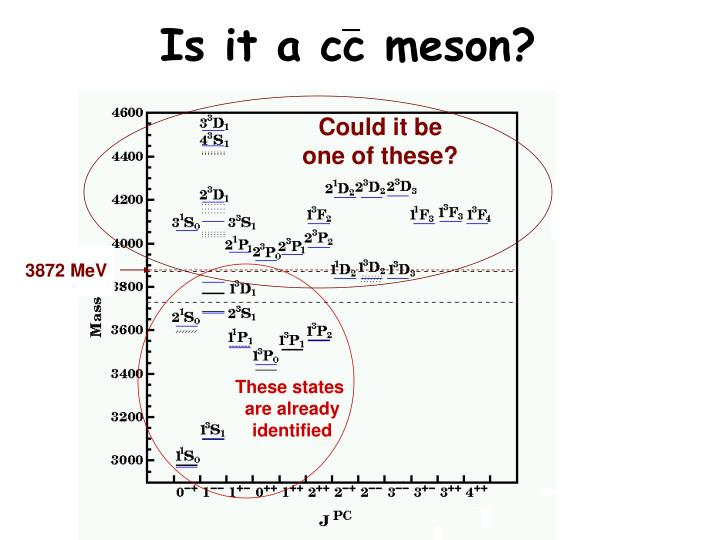 Is it a cc meson?
