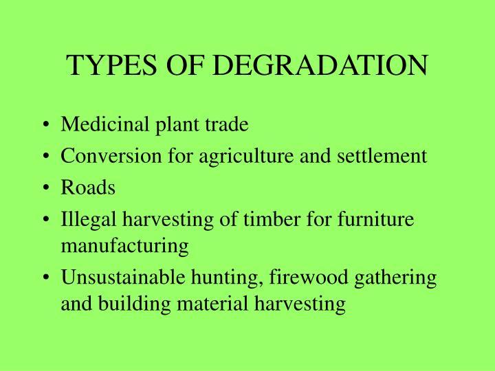 TYPES OF DEGRADATION