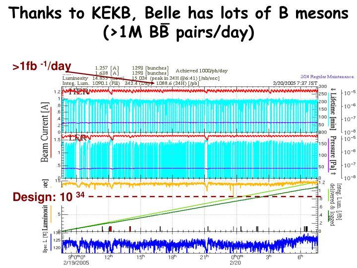 Thanks to KEKB, Belle has lots of B mesons