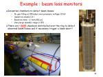 example beam loss monitors