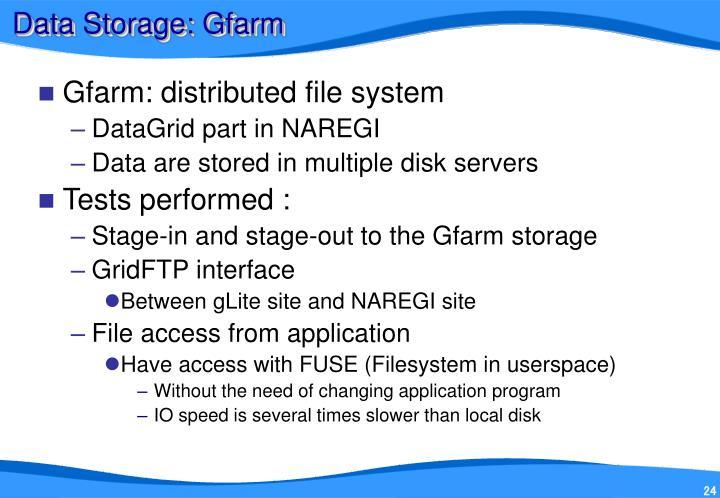 Data Storage: Gfarm