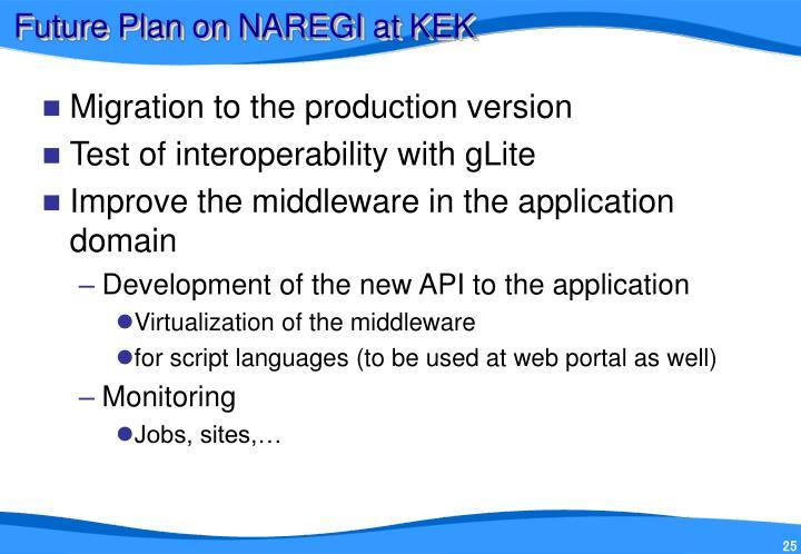 Future Plan on NAREGI at KEK
