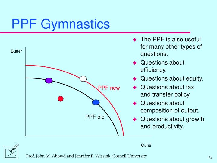 PPF Gymnastics