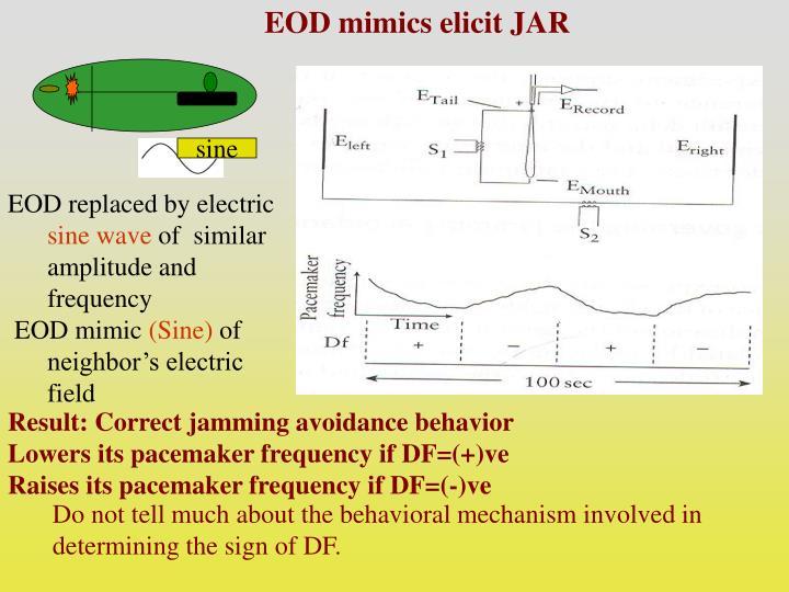 EOD mimics elicit JAR