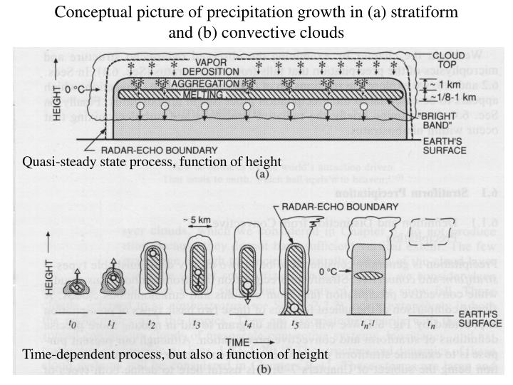 Conceptual picture of precipitation growth in (a) stratiform and (b) convective clouds