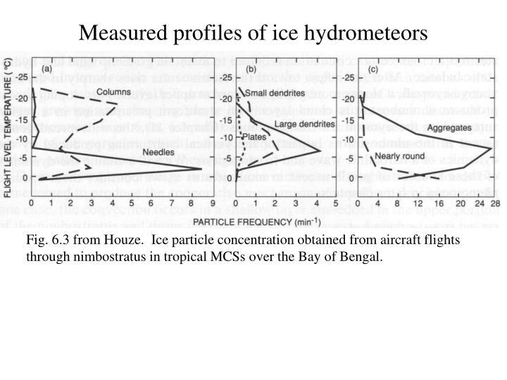 Measured profiles of ice hydrometeors