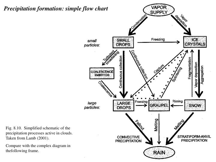 Precipitation formation: simple flow chart