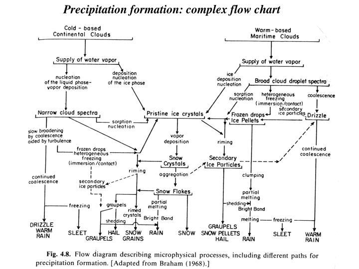 Precipitation formation: complex flow chart