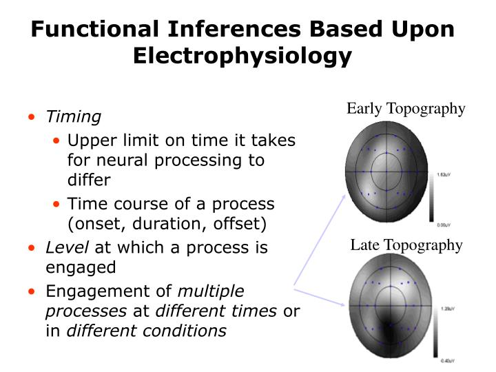 Functional Inferences Based Upon Electrophysiology