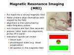 magnetic resonance imaging mri