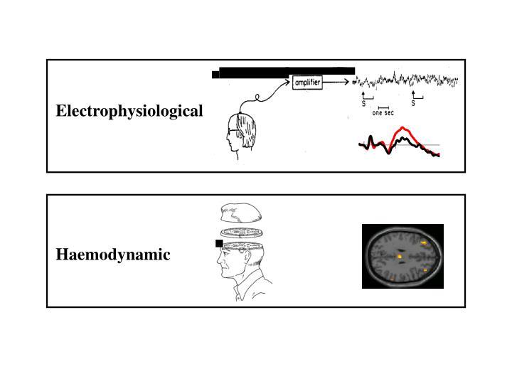 Electrophysiological
