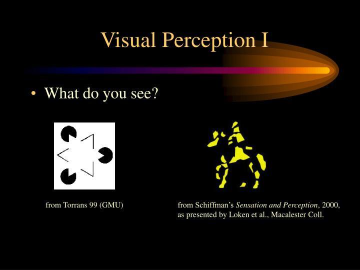 Visual Perception I
