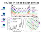 icecube in ice calibration devices