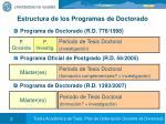 estructura de los programas de doctorado
