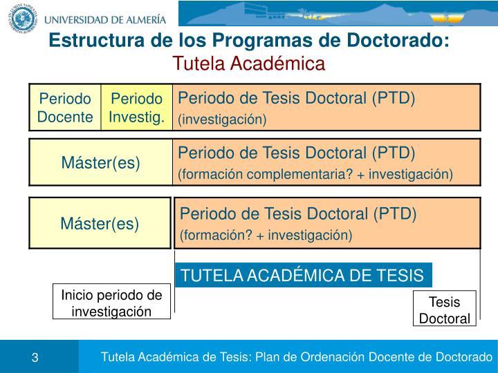 Estructura de los Programas de Doctorado: